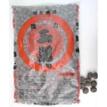 Kioryoku Tamahi  4Kg - Large grain