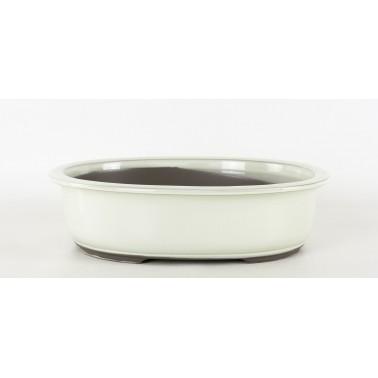 Seto Bonsai Pot 1B-11B BEIGE