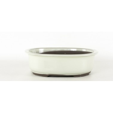 Seto Bonsai Pot 1B-11C BEIGE