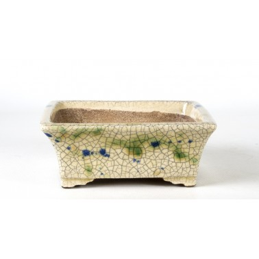 Terahata Satomi Bonsai Pot 6B-02