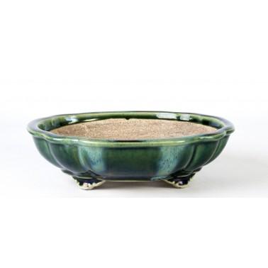 Terahata Satomi Bonsai Pot 6B-08B